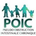 Pseudo obstruction intestinale